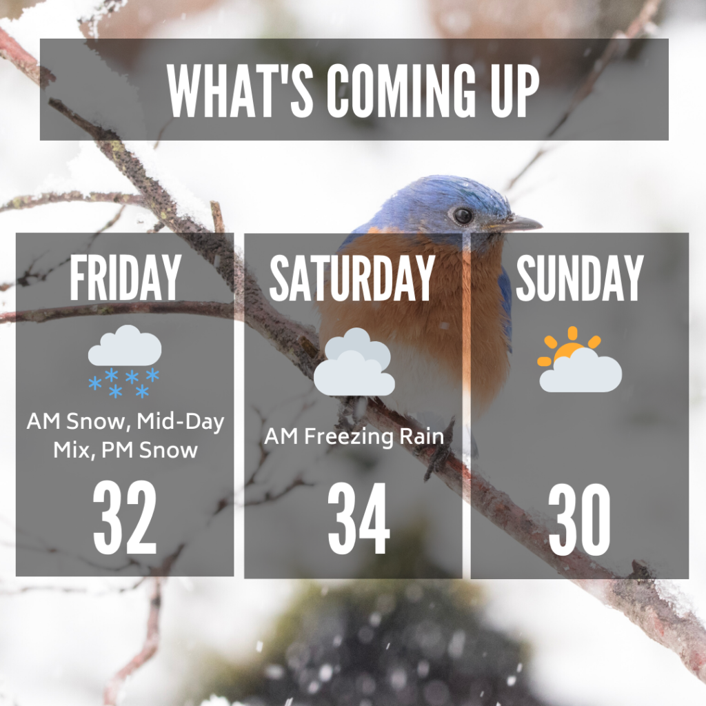 3-Day Forecast for Friday, Jan. 24, Saturday, Jan. 25, and Sunday, Jan. 26.
