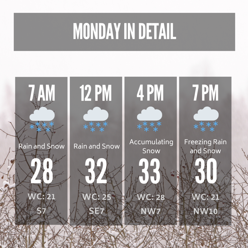 Daypart planner for Monday, Feb. 17, 2020